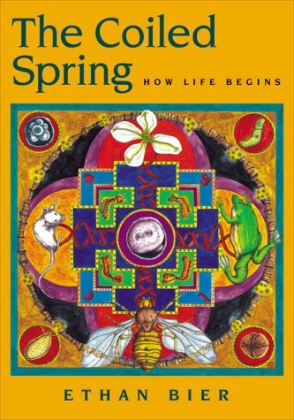 The Coiled Spring: How Life Begins Ethan Bier