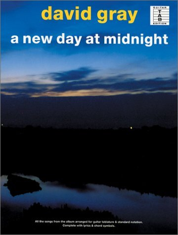 A New Day at Midnight  by  David Peter Gray