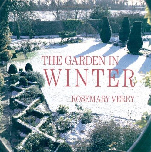 Scented Garden Rosemary Verey