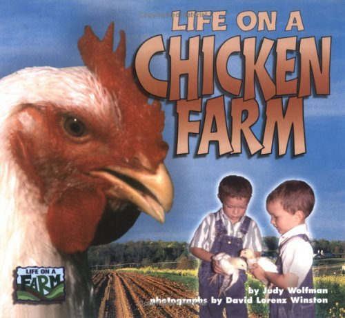 Life On A Chicken Farm Judy Wolfman