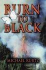 Burn to Black  by  Michael Kurtz
