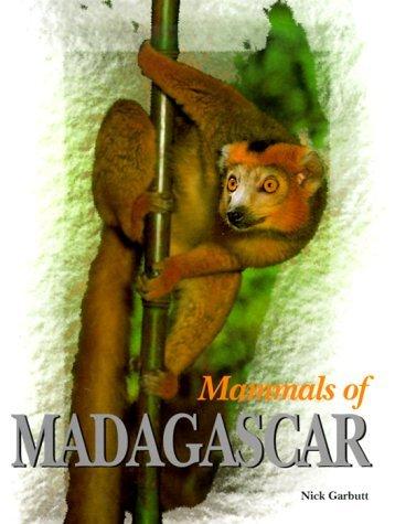 Mammals Of Madagascar Nick Garbutt