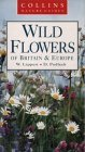 Wild Flowers of Britain & Europe Wolfgang Lippert