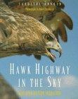 Hawk Highway In The Sky: Watching Raptor Migration Caroline Arnold