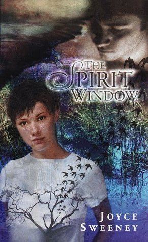 The Spirit Window  by  Joyce Sweeney