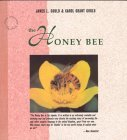 The Honey Bee James L. Gould