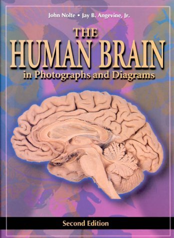 The Human Brain: In Photographs And Diagrams John Nolte