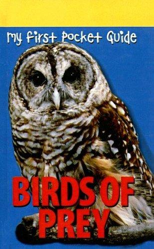 Birds of Prey Amy Donovan