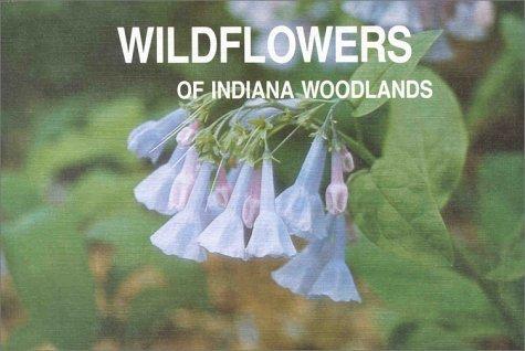 Wildflowers Of Indiana Woodlands  by  Sylvan T. Runkel