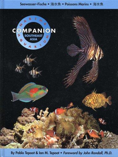 Marine Aquarium Companion Vol. 1: Southeast Asia  by  John D. Randall
