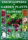 Encyclopedia Of Garden Plants And Flowers Lance Hattatt