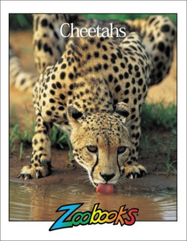 Cheetahs Linda C. Wood