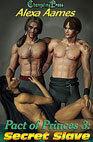 Secret Slave (Pact of Princes #3)  by  Alexa Aames