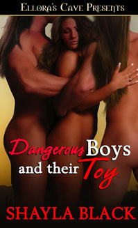 Dangerous Boys and Their Toy Shayla Black