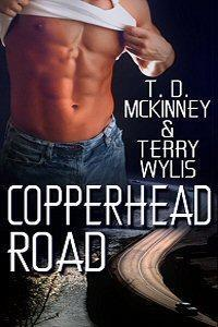 Copperhead Road (Southern Beaus #3)  by  T.D. McKinney