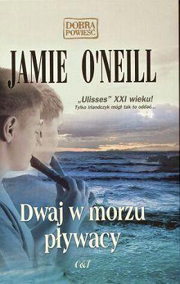 Dwaj w morzu pływacy  by  Jamie ONeill