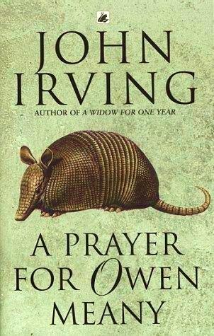 Eno leto vdova John Irving