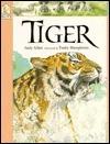 Tiger  by  Judy Allen