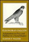 Manual of Neotropical Birds, Volume 1 Emmet Reid Blake