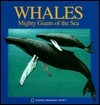 Pop-Up: Whales (National Geographic Action Book) National Geographic Kids