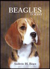 Beagles Today  by  Andrew H. Brace