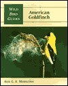 American Goldfinch  by  Alex L.A. Middleton
