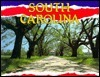 South Carolina  by  Charles Fredeen