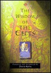 The Wisdom Of The Celts David Adam