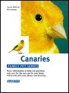 Canaries  by  Sigrun Rittrich-Dorenkamp