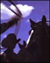 Kurt Markus: Cowpuncher: Cowboyin in the Southwest Kurt Markus