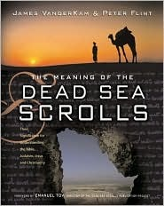 The Meaning of the Dead Sea Scrolls: Their Significance For Understanding the Bible, Judaism, Jesus, and Christianity  by  James C. VanderKam