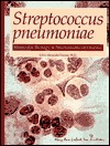 Streptococcus Pneumoniae: Molecular Biology & Mechanisms of Disease Alexander Tomasz