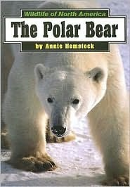 Polar Bear  by  Annie Hemstock