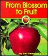From Blossom to Fruit Gail Saunders-Smith