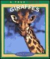 New True Books: Oppossums  by  Emilie U. Lepthien