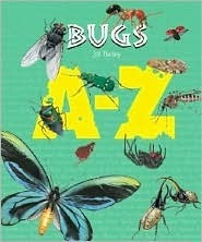 Bugs  by  Jill Bailey