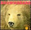 Brown Bears  by  Diana Star Helmer