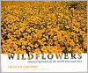 Wildflowers Book Graham Osborne