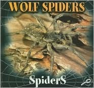 Wolf Spiders  by  Jason Cooper