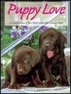 Puppy Love Voyageur Press