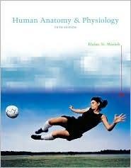 Human Anatomy And Physiology 5th Edition Elaine Nicpon Marieb