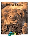Baby Animals  by  John Francis