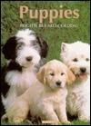 Puppies Brigitte Bulard-Cordeau