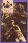 The Money Hunt (Hardy Boys, #101)  by  Franklin W. Dixon