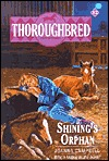 Shinings Orphan (Thoroughbred, #12)  by  Joanna Campbell