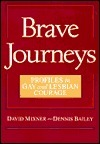 Brave Journeys: Profiles in Gay and Lesbian Courage  by  David Mixner