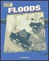 Floods Cari Meister