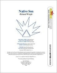 Native Son (SparkNotes Literature Guide)  by  SparkNotes