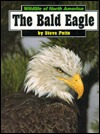 The Bald Eagle Steve Potts