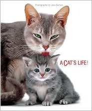 A Cats Life  by  Jane Burton